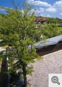 Rheinzink titāncinka jumti